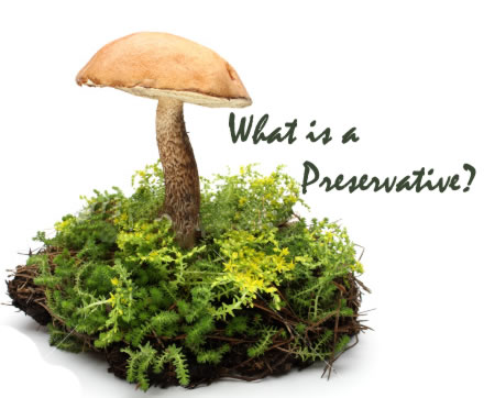 Preservatives - Cosmetic Preservatives